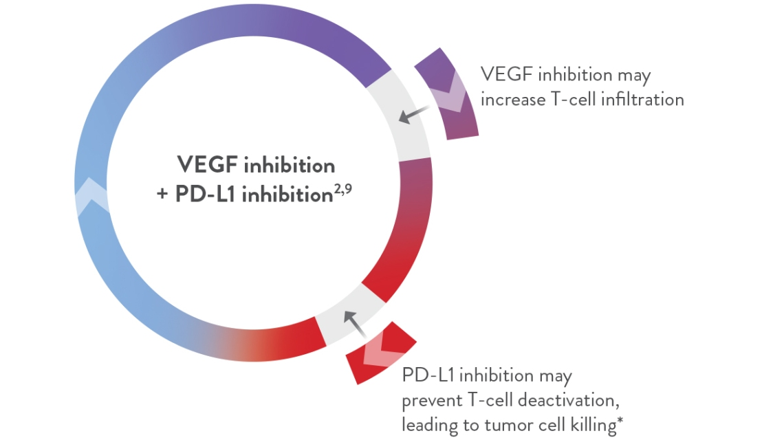 disease-pathways_PD-L1_vegf-combination_image