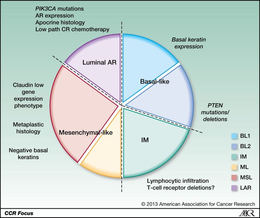 Living Longer: Advanced Breast Cancer (ABC) – Triple Negatives; ER/PR/HER2(-ve)